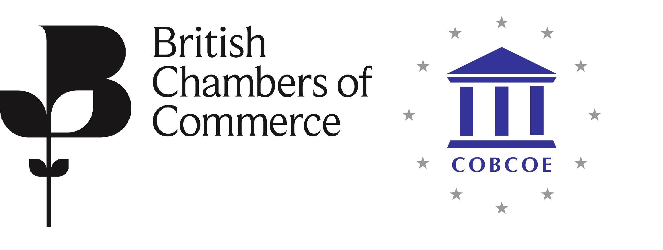 http://research.britishchambers.org.uk/survey/selfserve/215e/logo_787d967a91168d641cde1a1567df3bac.jpg